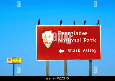 Florida, Everglades National Park, Shark Valley, Entrance Sign - Stock Photo