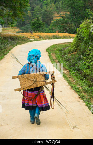 Flower Hmong woman walking along road, nr Bac Ha, nr Sapa, N. Vietnam - Stock Photo