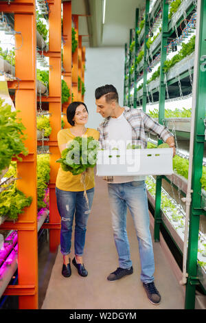 Husband and wife feeling happy after growing lettuce in greenhouse
