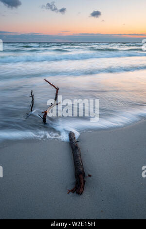 Beautiful sunrise at baltic sea with driftwood in foreground, Sehlendorf Schleswig-Holstein - Stock Photo
