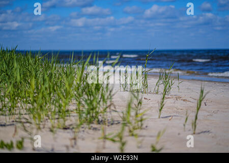 sea beach with blu sky and waves in summer sand - Stock Photo