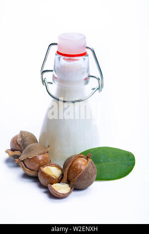 Skin and hair care product, creme or shampoo made from natural macadamia oil in bottle and macadamia nuts isolated on white background copy space - Stock Photo