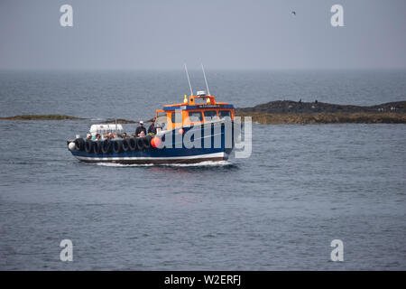 St Cuthbert II boat built in 1983 at sea providing leisure trips around the Farne Islands in Northumberland UK and operating out of Seahouses harbour - Stock Photo