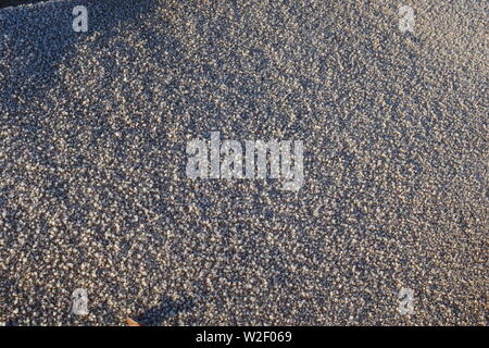 Macro Natural background of Winter Frost on a Sandy Beach. Aberdeen, Scotland UK. - Stock Photo