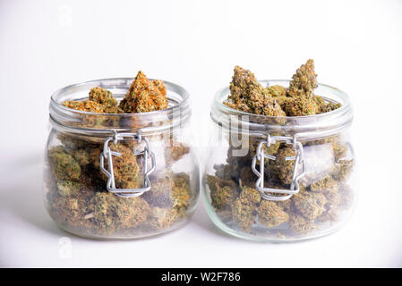 Detail of cannabis buds on clear glass jars isolated on white - medical marijuana dispensary concept - Stock Photo