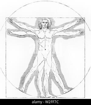 Charles Blanc-Grammaire des arts du dessin, (1889) (page 49 crop). - Stock Photo