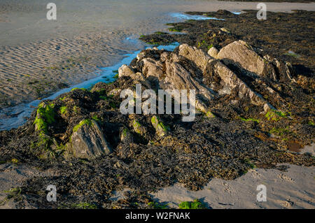 Protruding rock formations at low tide on Douglas beach, Isle of Man. - Stock Photo