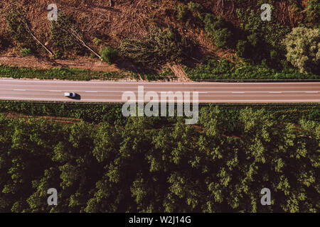 Aerial view of single white car on road through forest region with large cottonwood trees in summer afternoon - Stock Photo