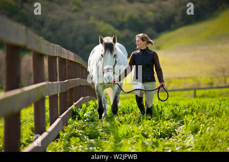 Young woman leading a horse through a grassy paddock on a farm. - Stock Photo