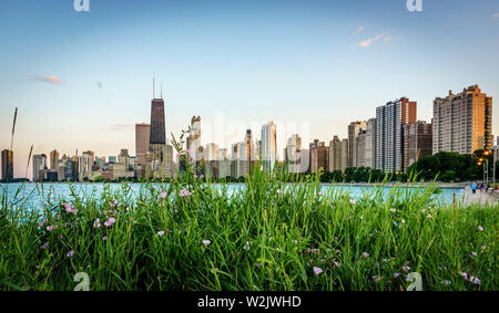 The Chicago Skyline - Stock Photo