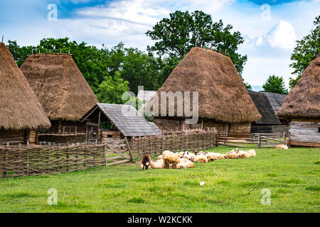 typical Romanian village with old peasant houses - Stock Photo