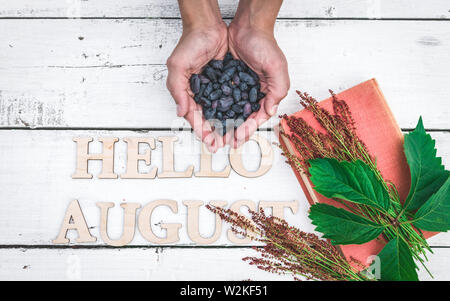 Summer banner: Word Hello August, old book and Male hands hold blue berries on a white wooden rustic background. Horizontal flat lay - Stock Photo