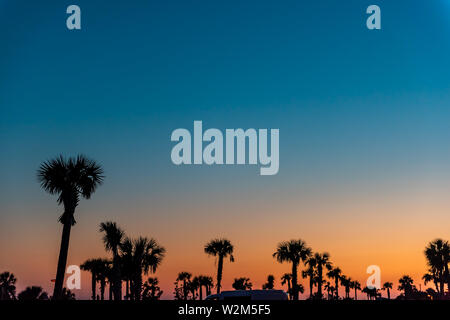 Silhouette of palm trees leaves against sky in Siesta Key, Sarasota, Florida with orange blue sky in beach parking lot - Stock Photo