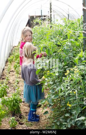 Two young girls (children) in a hothouse garden. - Stock Photo
