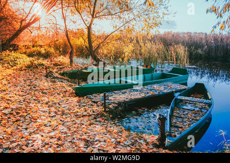 River shore strewn with fallen yellow leaves moored wooden boats on the water at sunset the sun shines through the branches of a tree - Stock Photo