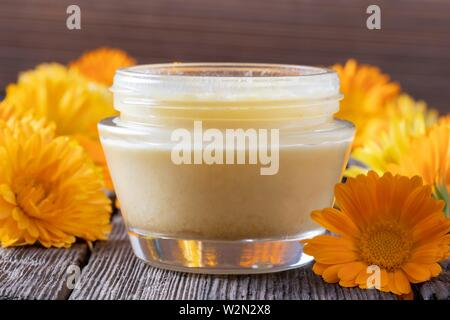 A jar of homemade ointment made from shea butter and fresh calendula flowers. - Stock Photo