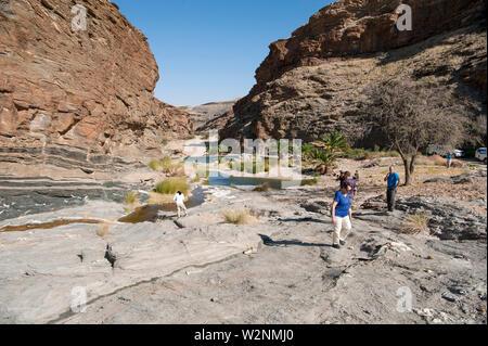 Desert Oasis, Brandberg Mountain, Damaraland, Namibia - Stock Photo