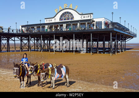 UK,Lincolnshire,Cleethorpes,Pier Beach & Donkeys - Stock Photo