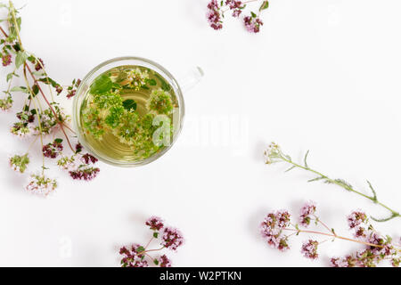 Herbal tea with origanum isolated on white background - Stock Photo