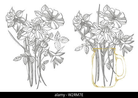 Tulips, Roses and Narcissus flowers bouquet isolated on white background. Set of drawing cornflowers, floral elements, hand drawn botanical illustrati - Stock Photo