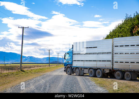 Sheffield, Canterbury, New Zealand, July 11 2019: A Carrfields livestock truck backed into cattle yards to load up on a rural gravel road - Stock Photo
