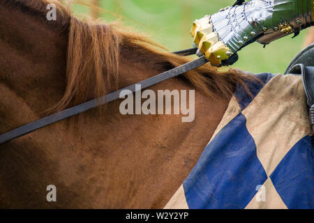 Close up of the hand of a knight holding the reins of a horse - Stock Photo