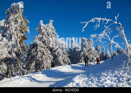Hiker in winter landscape, summit of Wurmberg mountain, Lower Saxony, Harz National Park, Braunlage, Germany - Stock Photo