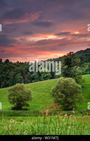 Sunset above trees and meadow in the grounds of the Penland School of Craft. - Stock Photo