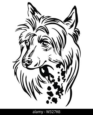 Decorative outline portrait of Chinese Crested Dog, vector illustration in black color isolated on white background. Image for design and tattoo. - Stock Photo