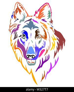 Colorful decorative outline portrait of Longhaired German Shepherd Dog, vector illustration in different colors isolated on white background. Image fo - Stock Photo