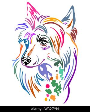 Colorful decorative outline portrait of Chinese Crested Dog, vector illustration in different colors isolated on white background. Image for design an - Stock Photo