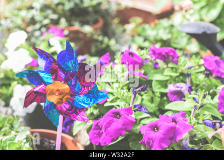 Child's toy windmill in garden or yard, colourful toy in a home garden flower bed - Stock Photo