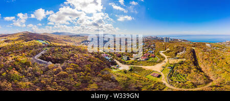 Aerial top down view of autumn forest with green and yellow trees. Mixed deciduous and coniferous forest. Beautiful fall scenery