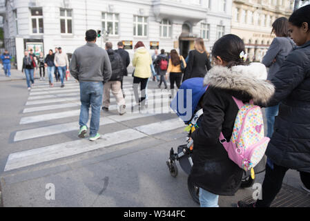 People crossing the street, taking public transport, walking their dogs and riding bicycles, traffic, zebra crossing in Vienna, Europe, Austria - Stock Photo