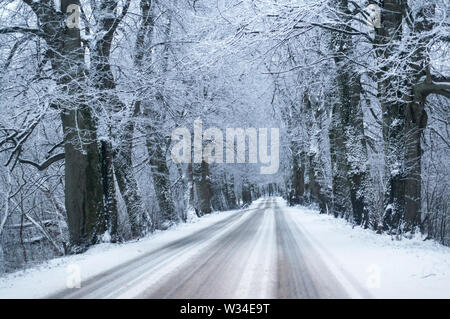 snow-covered highway, road in the forest in winter - Stock Photo