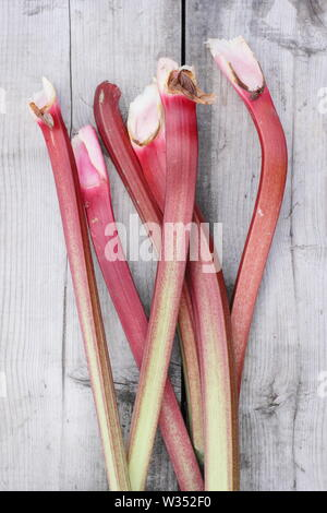 Rheum rhabarbarum. Freshly harvested rhubarb stalks on wooden table. Foliage is toxic. - Stock Photo