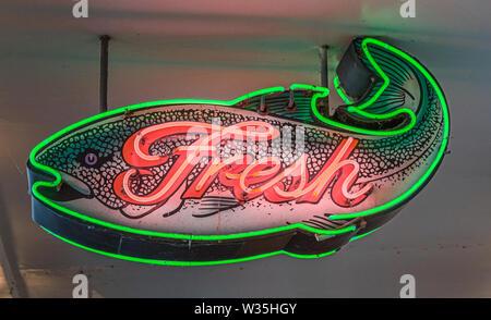Fresh Fish in Neon - Stock Photo