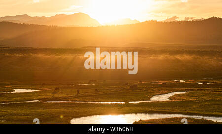 Dust beams and cattle along Hot Creek ranch lands during sunset in Long Valley near Mammoth Lakes. - Stock Photo