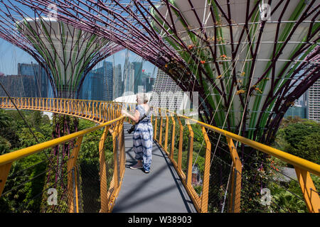 Singapore, Gardens by the Bay, Supertree Grove, Man-made vertical gardens up to 16 stories tall. OCBC Skyway.