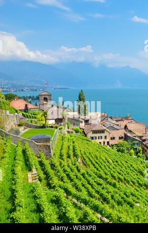 Swiss village Saint Saphorin on the coast of Geneva Lake, Lac Leman in French. Terraced vineyards on the slopes adjacent to the lake. Beautiful Switzerland. Holiday spot. Nature, countryside. - Stock Photo