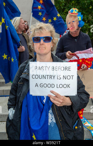 Westminster, London, UK. 26th June, 2019.  A Brexit Remain Campaigner holds up a Party Before Country is Not a Good Look sign. Credit: Maureen McLean/Alamy - Stock Photo