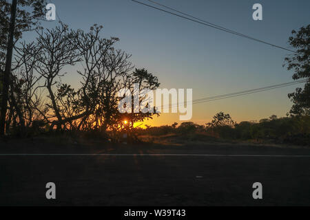 Rising sun behind the treetops. Setting sun behind trees. The new day begins. End of a wonderful day. The sky is orange. Roads, tropical nature. - Stock Photo