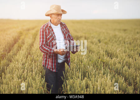 Farmer standing in a wheat field using modern technologies in agriculture.  Farmers with tablet in a wheat field. - Stock Photo