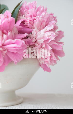 Pink peony flowers in a white bowl on a white table. White background. Still life. Light morning light in white interior. - Stock Photo