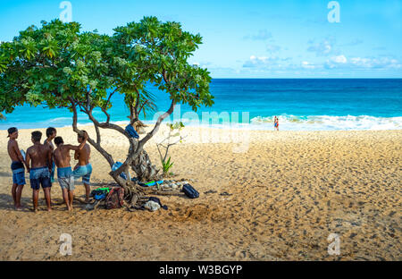 Ohahu island, Hawaii - May 1, 2019: A group of locak boys in the Sandy Beach Park in the south east area of the island - Stock Photo