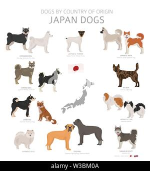 Dogs by country of origin. Japanese dog breeds. Shepherds, hunting, herding, toy, working and service dogs  set.  Vector illustration - Stock Photo