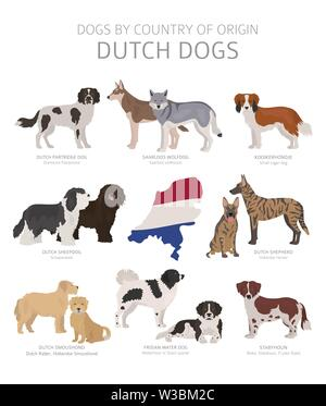 Dogs by country of origin. Dutch dog breeds. Shepherds, hunting, herding, toy, working and service dogs  set.  Vector illustration - Stock Photo