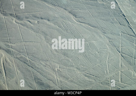 Lizard, Tree and Hands Images at Nazca Lines in Peru - Stock Photo