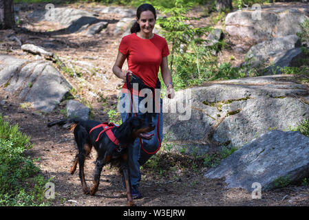 Woman walking in the forest with a Gordon Setter - Stock Photo