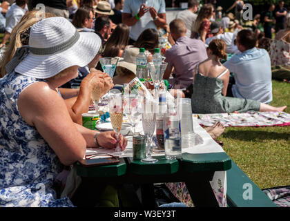 picnickers drinking champagne with strawberries on henman hill / murray mount 2019 wimbledon championship - Stock Photo